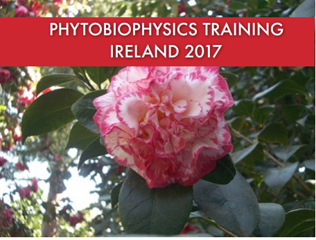 Phytobiophysics Training Ireland 2017